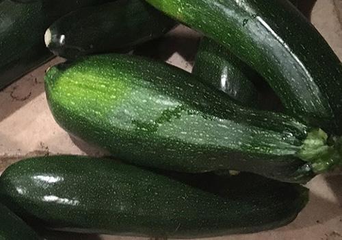 scafarms_zucchini